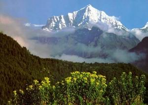 Provincia Tibet