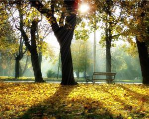 O Outono e a Vida