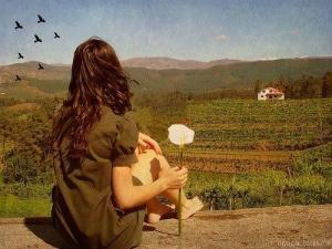Sonhe, viaje, busque sua felicidade
