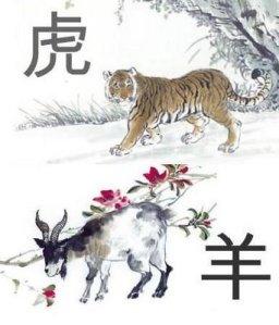 tigre e cabra