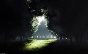 Até na mais densa escuridão se encontra a luz