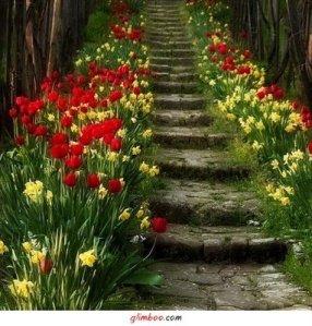 Com seus defeitos, você pode abrir um caminho de flores!